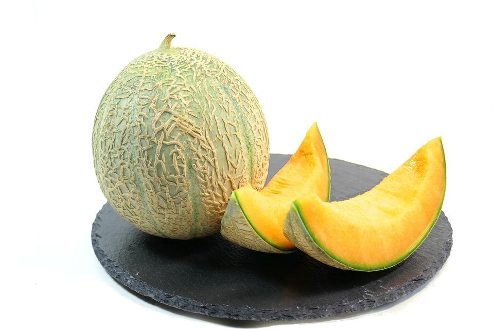Melons : Culture des Melons et Variété de Melon