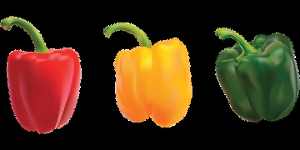 poivron rouge, jaune et vert