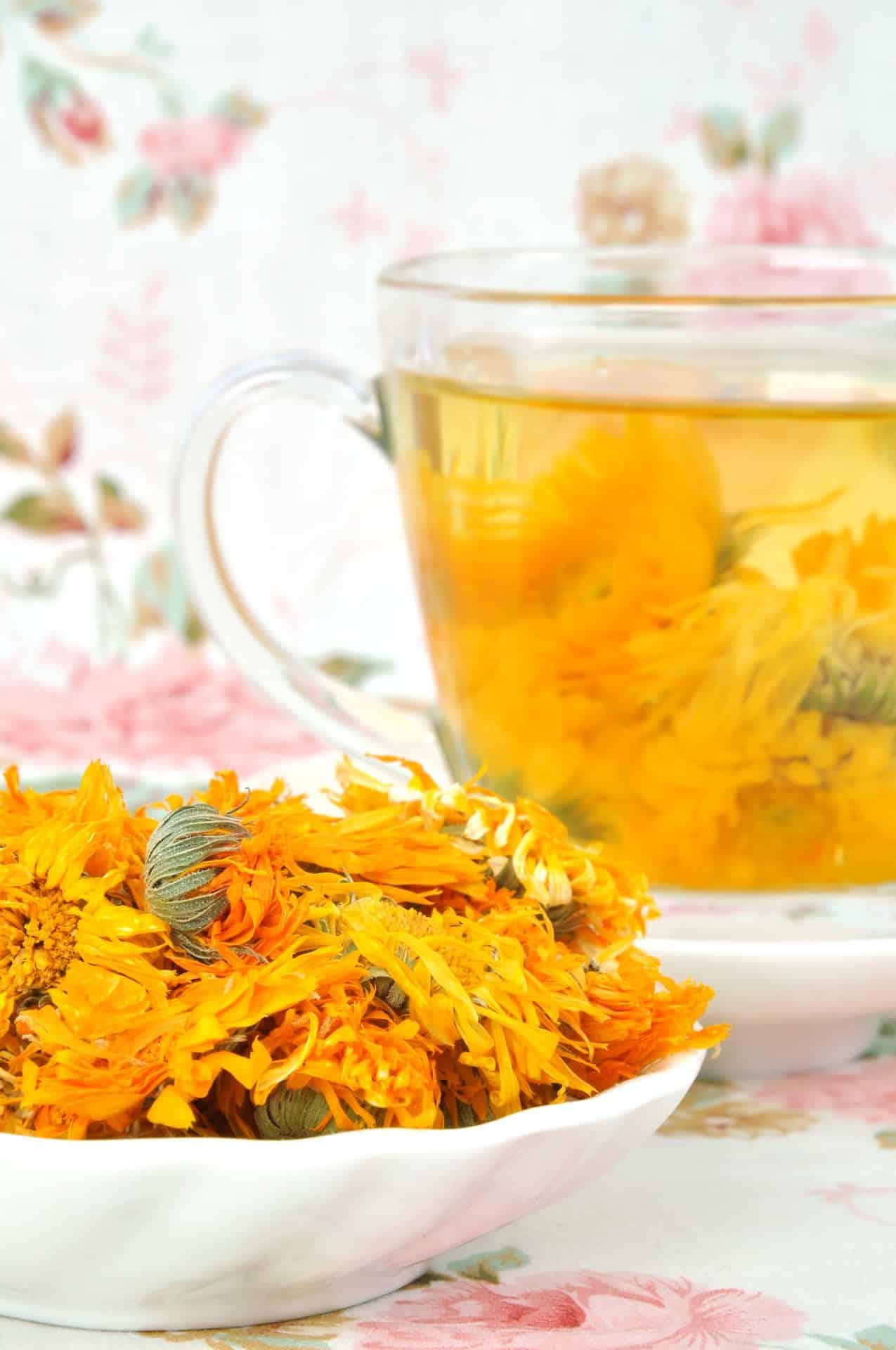 chrysanthème thé