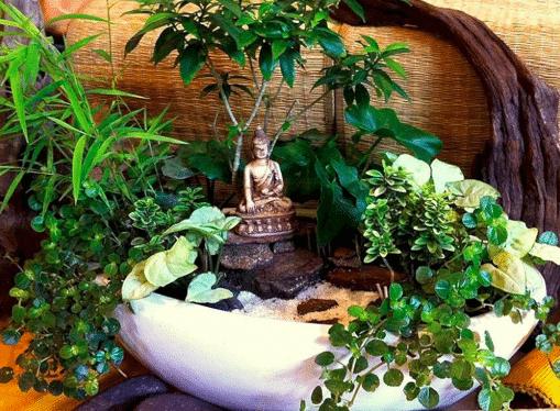 Jardin japonais zen miniature
