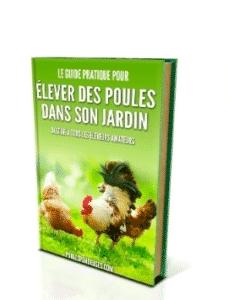 élever des poules dans son jardin
