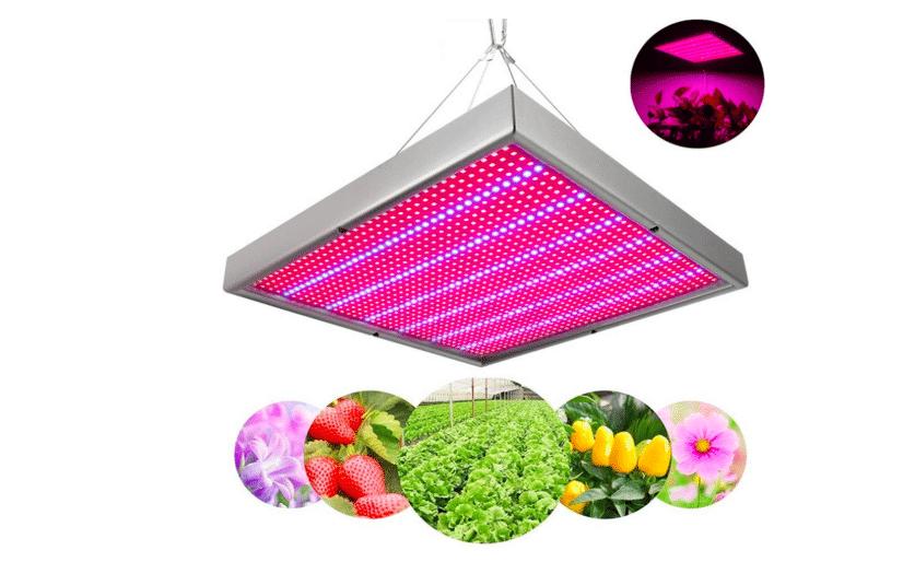 Lampe à LED pour plantes vertes