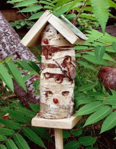 Maison en bois pour coccinelles