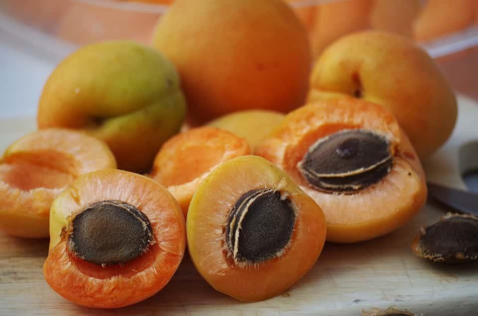 noyaux abricots