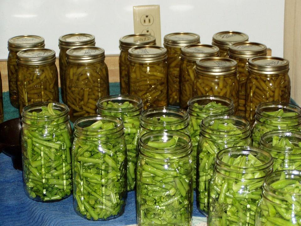 conserve haricot vert