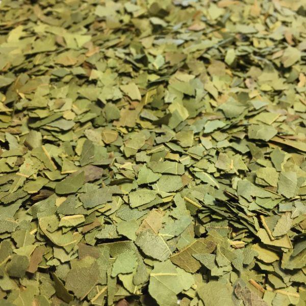 Laurier sauce feuilles
