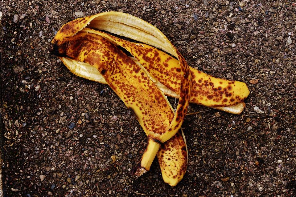 peau banane jardin