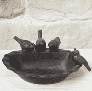 abreuvoir pour mésange charbonnière