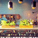 plantes intérieur cuisine