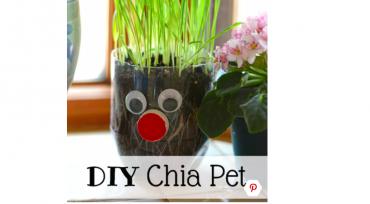 DIY animal graine blé