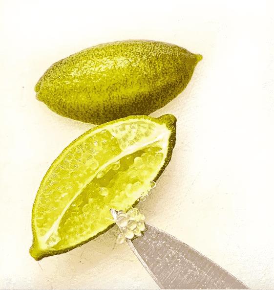 fruit citron caviar