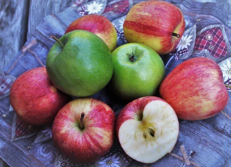 Monodiète pomme